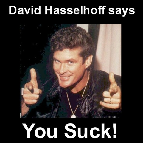 [Image: DavidHasselhoffsaysyousuck.jpg]