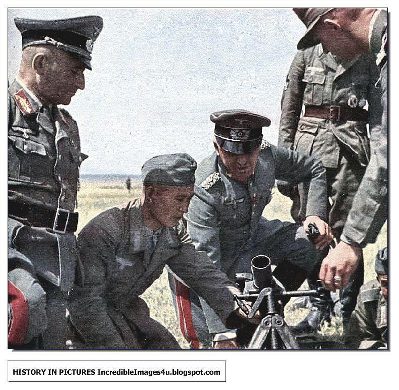 """Батальон """"Крым"""" будет незаменим в момент деоккупации полуострова, - Чубаров - Цензор.НЕТ 5405"""