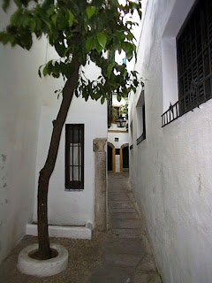 Callejita del pañuelo - Córdoba
