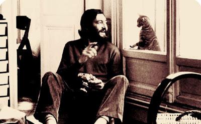 Julio y los gatos