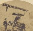 Cervatos. Bueyes del Sr. Cura delante de la portada de la iglesia. A destacar el sombrero del boyero y las ruedas del carro