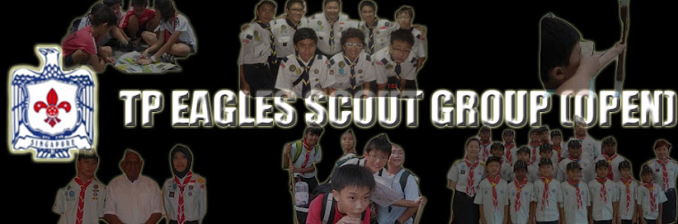 Toa Payoh Eagles Scout Group (Open)