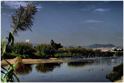 Paseo fluvial del río Besos