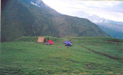 Roopkund Trek Ghora Lotani camp site