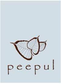 Peepul Style Blog