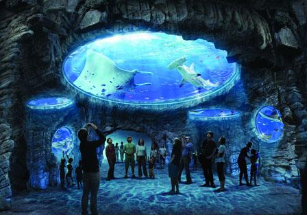 We Study the World: New Aquarium at Hong Kongs Ocean Park