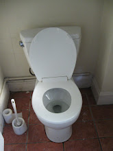 The toilet I cleaned