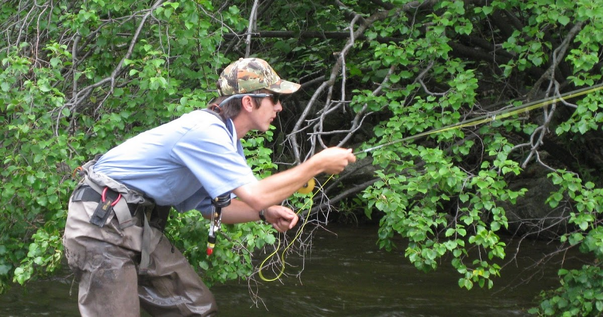 Colorado fly fishing reports big dries on boulder creek for Boulder creek fishing