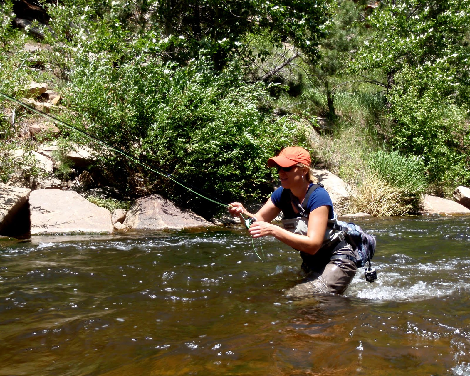 Colorado fly fishing reports big thompson fishing report for Colorado river fly fishing