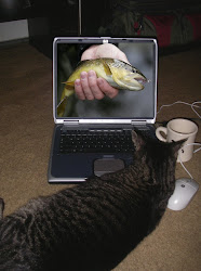 Do You Like To Watch Fish Porn At The Office?
