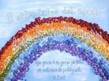 2008 anno dei diritti umani