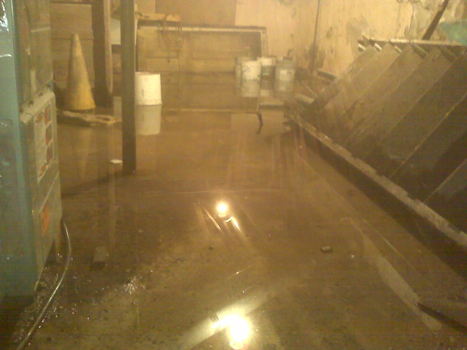 Shel Water In The Basement