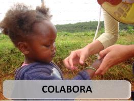 COLABORA: