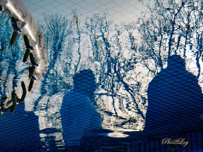 Reflections | Yansımalar 1