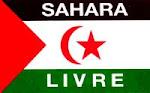 Solidariedade com o Povo Saharaui