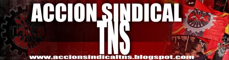 Acción Sindical TNS