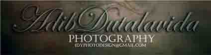 idyphotodesign[x]