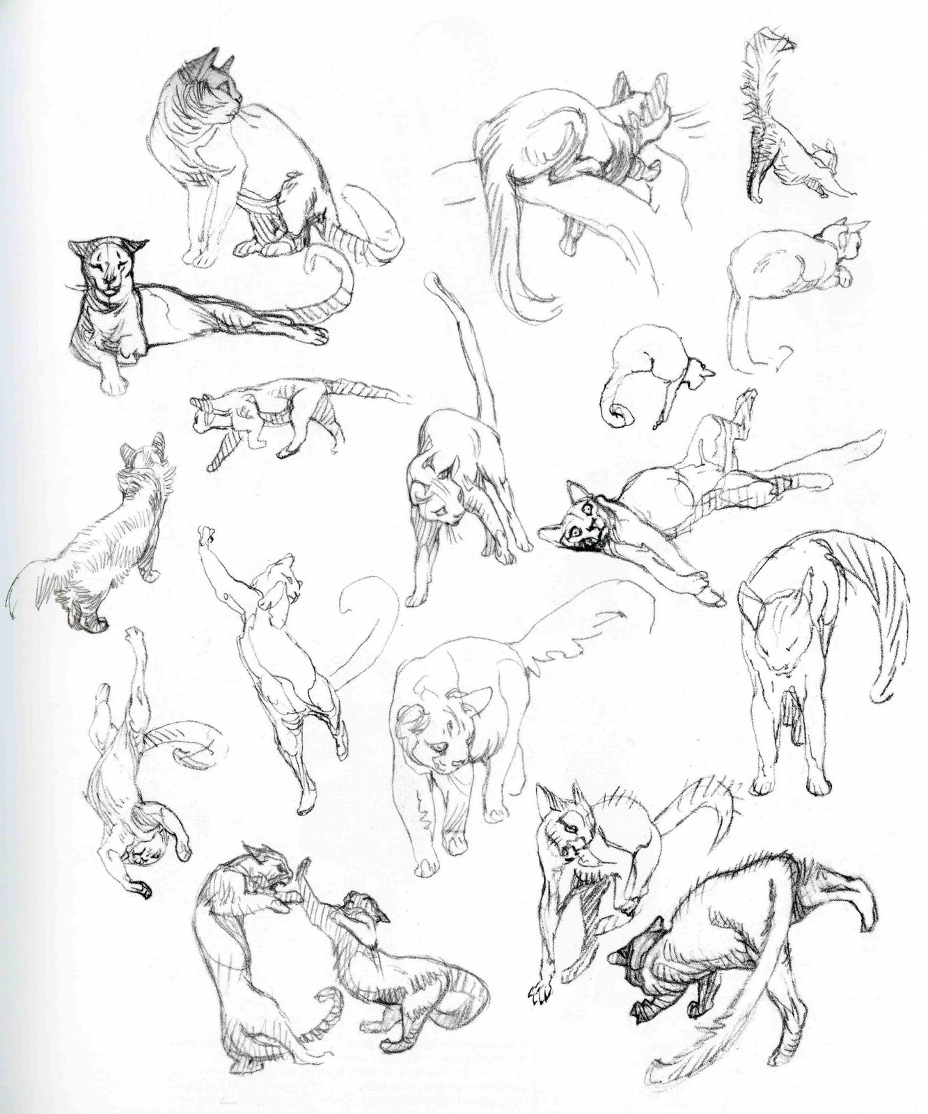 Character Design From Life Drawing : Character and creature design notes