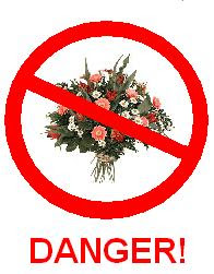 The Dangers of Flowers