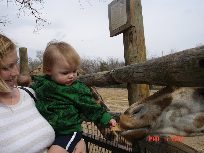 Noah Feeds the Giraffe