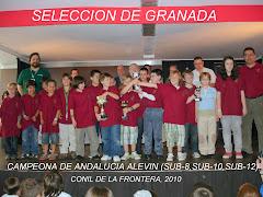 SELECCIÓN DE GRANADA