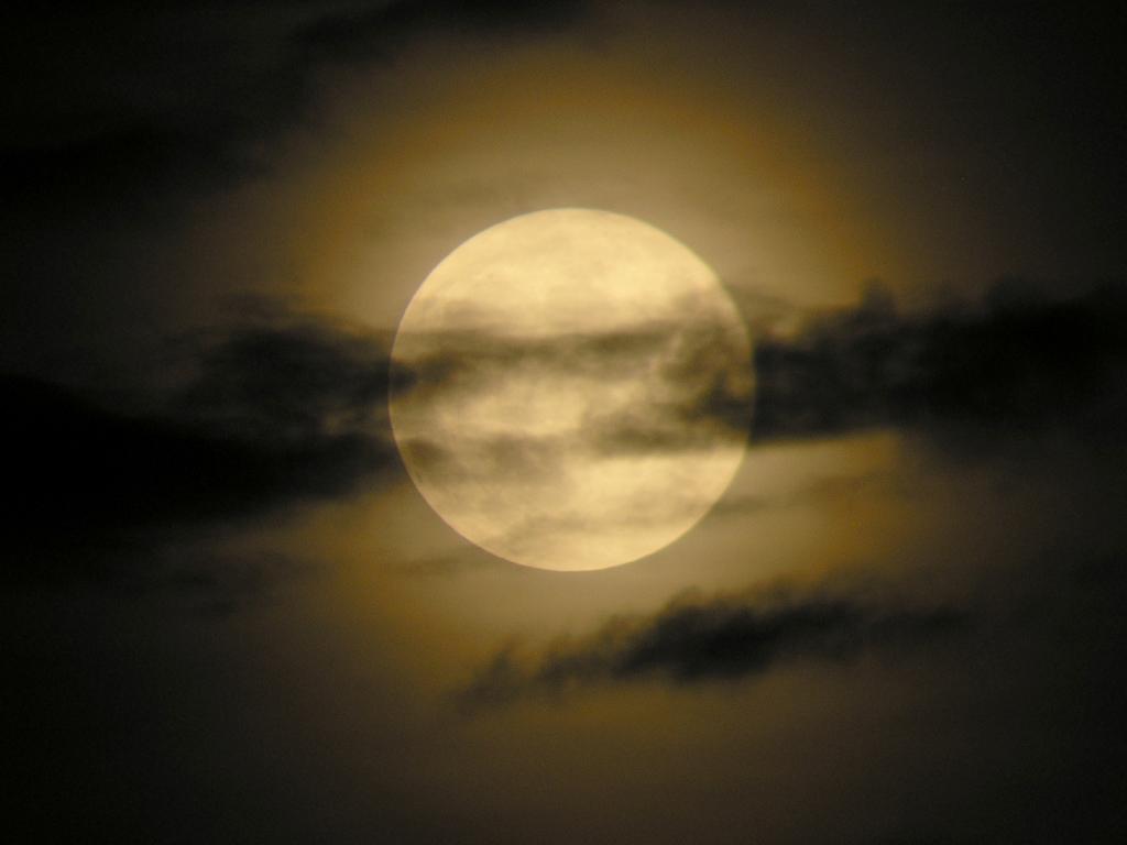 El otro lado lamento de lobiz n for Que fase lunar hay hoy