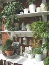 mitt planteringsbord