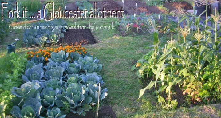 Fork it ... a Gloucester allotment