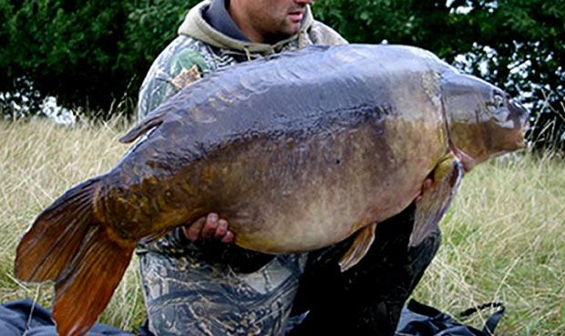 The Britain's biggest freshwater fish