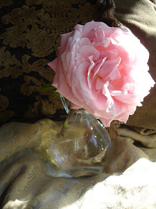 I love pink roses!  Truthfully, I love all roses, but there is something about pink...