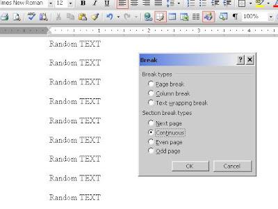how to insert section break