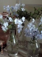 Meus vasinhos de flores.