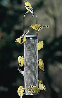 down pet price colibri feeder perky upside best finch