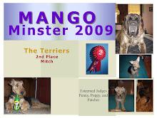 MangoMinster 2009