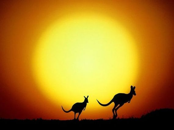 Q Significa Kangaroo que por aquel entonces