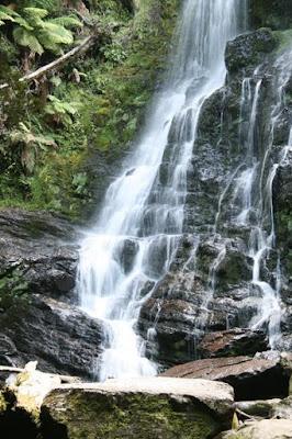 Nelson Falls, Tasmania, Australia - © CKoenig
