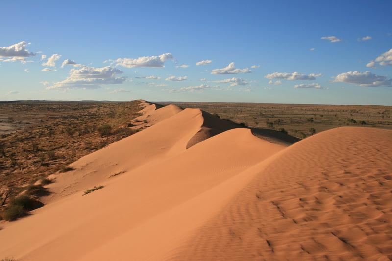 Najveće pustinje na svetu  Big+Red+Sand+Dune+Simpson+Desert+Queensland+Australia