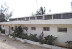Royal Palm Children's Home