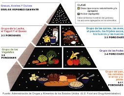piramide alimenticia