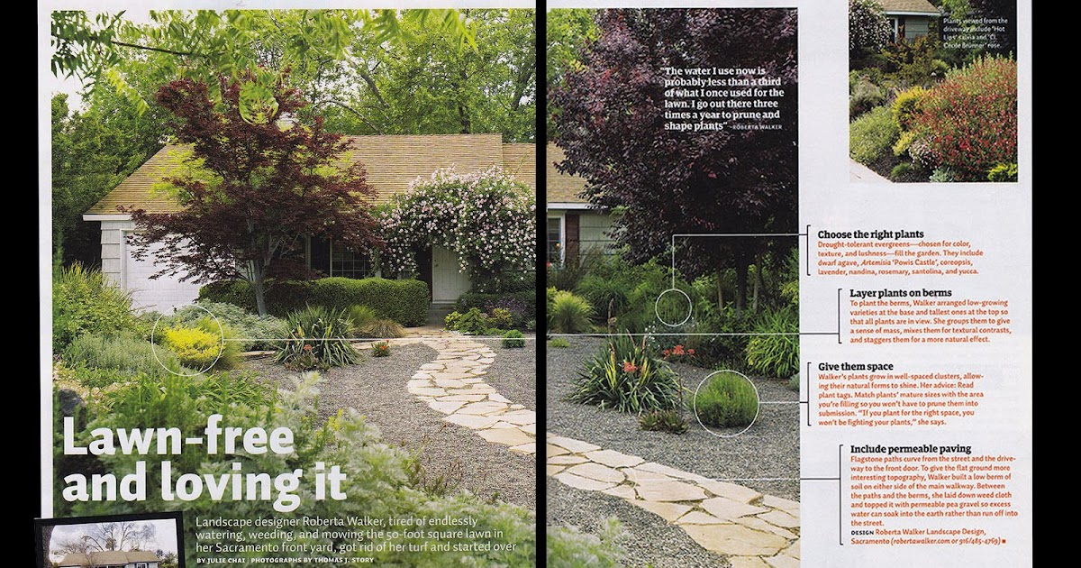 Garden Design News Sunset Magazine February 2009