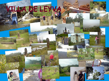 COLLAGE VILLA DE LEYVA