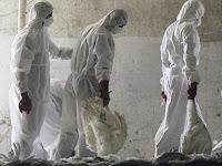 Disease Ecology: The Economic Impact of Influenza