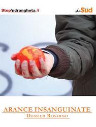 """""""Arance insanguinate – Dossier Rosarno"""""""