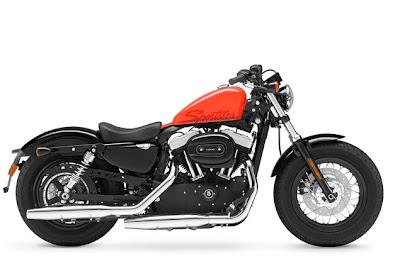2010-Harley Davidson 48