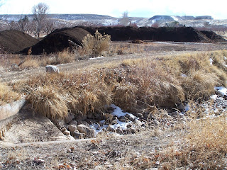 Manure 20 Feet from Canal