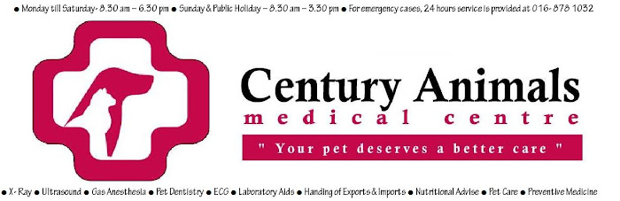 Century Animals Medical Centre