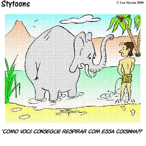 So para adultos  Elephant-penis