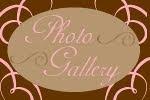 Pink Giraffe Photo Gallery