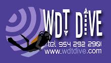 WDTdive Web Site