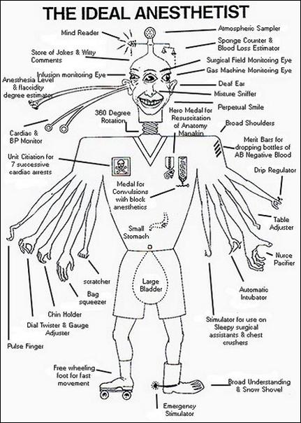 medical bird diagram